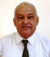 د. عبدالناصر الوالي*